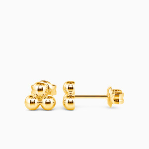 10K Gold Incomparable Beauty Jewelry Earrings